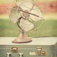 A Suitcase and a Fan.